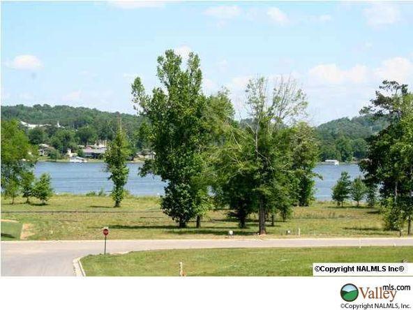 C Summerhill Dr., Guntersville, AL 35976 Photo 10