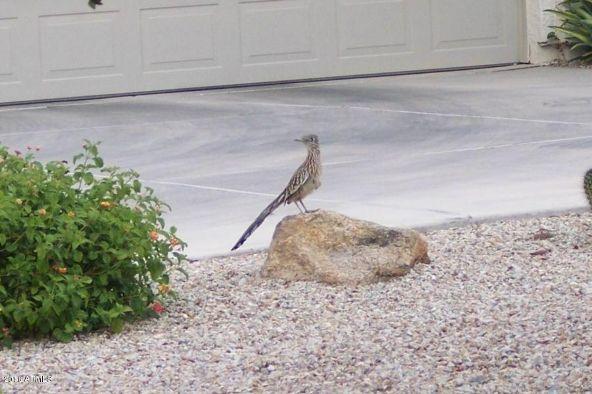 30083 N. Gecko Trail, San Tan Valley, AZ 85143 Photo 57