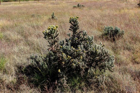 7400 E. Whisper Ranch Rd., Prescott Valley, AZ 86314 Photo 14