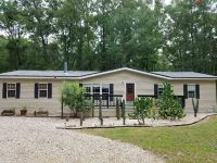 Home for sale: 329 S.W. Bonifay Glen, Fort White, FL 32038