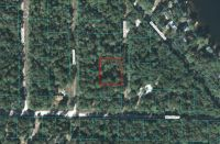 Home for sale: 0 N.E. 112th Ave., Fort McCoy, FL 32134
