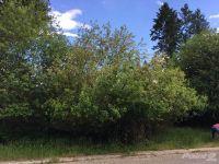 Home for sale: Klatawah St., Libby, MT 59923
