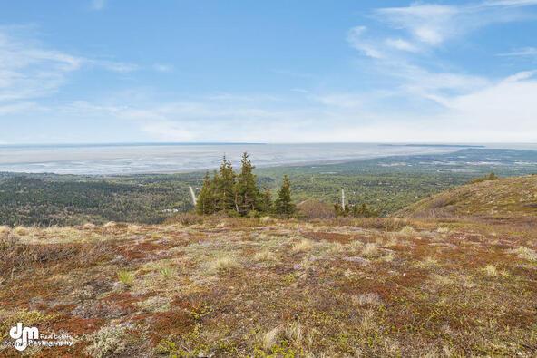 9820 Meadow Rd., Anchorage, AK 99516 Photo 6