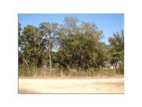 Home for sale: 102 Cottonwood Dr., Hawthorne, FL 32640