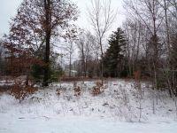 Home for sale: 19045 Joslin Cir., Big Rapids, MI 49307
