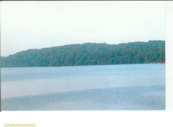 553 Lakeview Crest Dr., Pell City, AL 35128 Photo 7