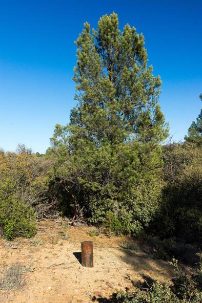 17955 W. Buckhorn Dr., Peeples Valley, AZ 86332 Photo 19