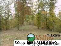 808 Lakewood Dr., Fort Payne, AL 35967 Photo 1
