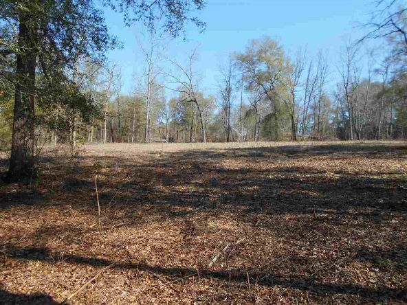 16.9 Acres Private Rd. 1363, Ariton, AL 36311 Photo 25