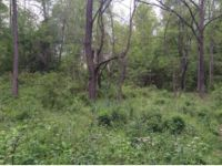 Home for sale: Tr 1 Bud Hicks Rd., Hampton, TN 37658
