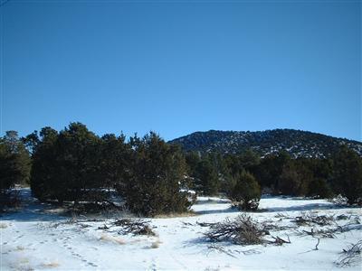 7382 N. Apache Avenue, Williams, AZ 86046 Photo 3