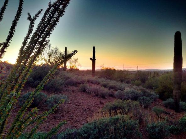 41000 N. 7th St., Phoenix, AZ 85086 Photo 15