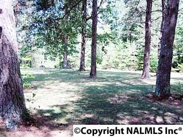 1172 County Rd. 639, Mentone, AL 35984 Photo 14