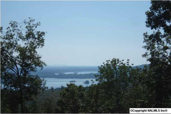 217 River Ridge Dr., Cedar Bluff, AL 35959 Photo 4