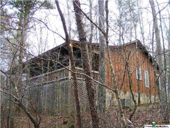 1226 County Rd. 106, Mentone, AL 35984 Photo 3