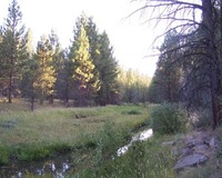 Home for sale: Goose Lake Causeway Rd., Davis Creek, CA 96108