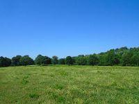 Home for sale: 1640 Crowder Rd., DeFuniak Springs, FL 32433
