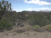 Home for sale: 92 Williams Ln., Magdalena, NM 87825