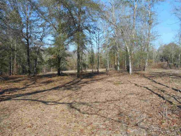 16.9 Acres Private Rd. 1363, Ariton, AL 36311 Photo 12