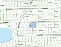 Home for sale: Canine St., Interlachen, FL 32148
