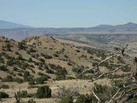 Home for sale: Camino Cerro Ch Camino Cerro Chato, Madrid, NM 87010