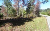 Home for sale: Lt 1 Brookwood Hills, Blairsville, GA 30512