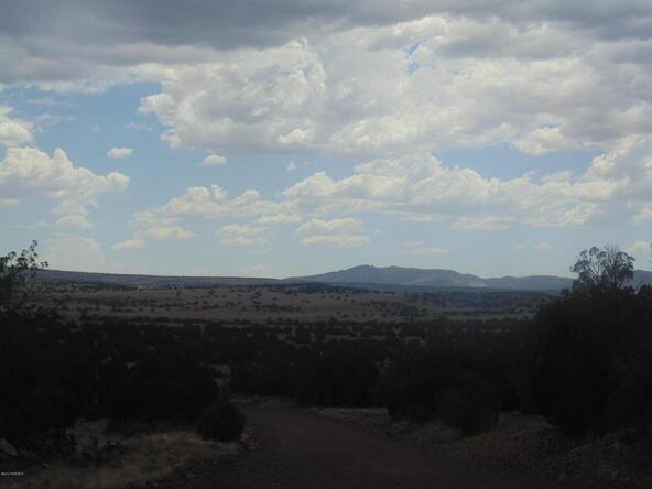 1368 Greenhorn Rd., Seligman, AZ 86337 Photo 8