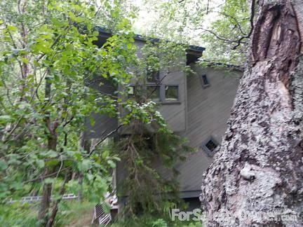 24343 Seward Hwy., Indian, AK 99540 Photo 3