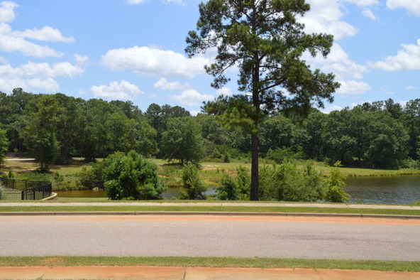 404 Turtleback Trail, Enterprise, AL 36330 Photo 34