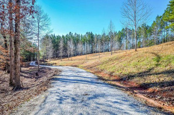 1227 Pine Rd., New Site, AL 36256 Photo 36