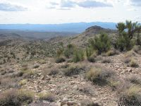 Home for sale: 0000 S. Territorial Trail, Wikieup, AZ 85360
