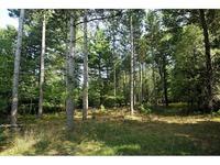 Home for sale: Spring Lake Dr., Sobieski, WI 54171