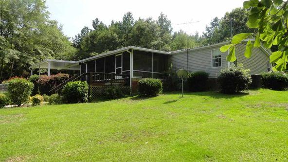 320 County Rd. 101, Jack, AL 36346 Photo 32