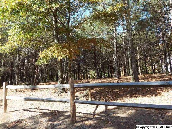 16 S. County Rd. 89, Mentone, AL 35984 Photo 26