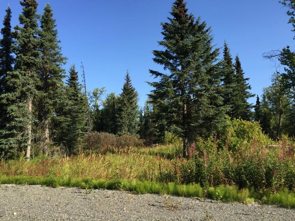 63787 Oil Well Rd., Ninilchik, AK 99639 Photo 31