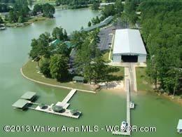 364 Lakeshore Dr., Double Springs, AL 35553 Photo 1