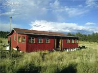 Home for sale: 2470 Doe Valley Rd., Guffey, CO 80820