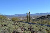 Home for sale: 37904 N. 34th Avenue, Phoenix, AZ 85086