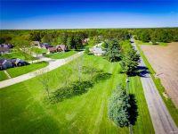 Home for sale: 4565 Boardwalk, Smithton, IL 62285