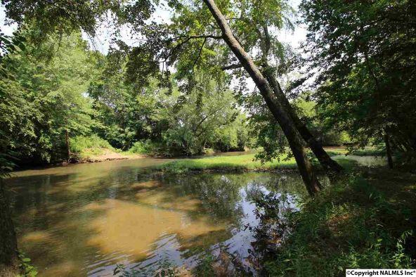 167 Riverwalk Trail, New Market, AL 35761 Photo 7
