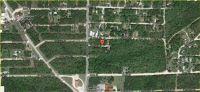 Home for sale: Boulder St., Diamond City, AR 72644