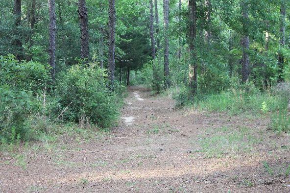 30191 Hollinger Creek Dr., Robertsdale, AL 36567 Photo 5