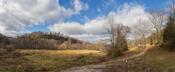 4417 Dry Branch Rd., Lexington, KY 40515 Photo 14