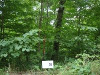 Home for sale: Lot 36 Gannaway Rd., Leitchfield, KY 42754