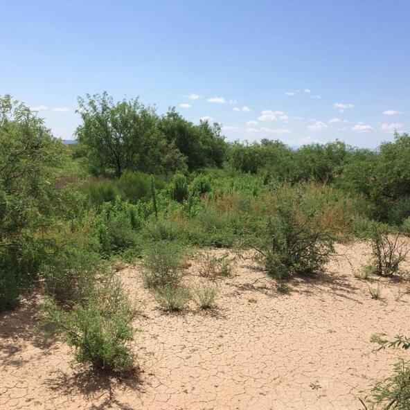 12990 W. Snyder Hill, Tucson, AZ 85735 Photo 2