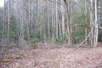 Home for sale: 1857 Walnut Flats Rd., Walland, TN 37886