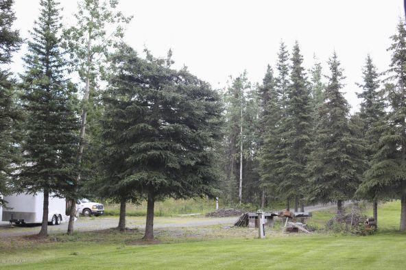 37615 State Park Rd., Soldotna, AK 99669 Photo 32
