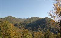 Home for sale: Lt130 Shiloh Ridge, Hayesville, NC 28904