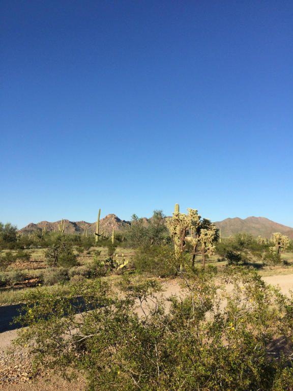 11715 Tortoise Trail, Tucson, AZ 85743 Photo 9