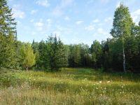 Home for sale: Alfalfa Rd., Lachine, MI 49756